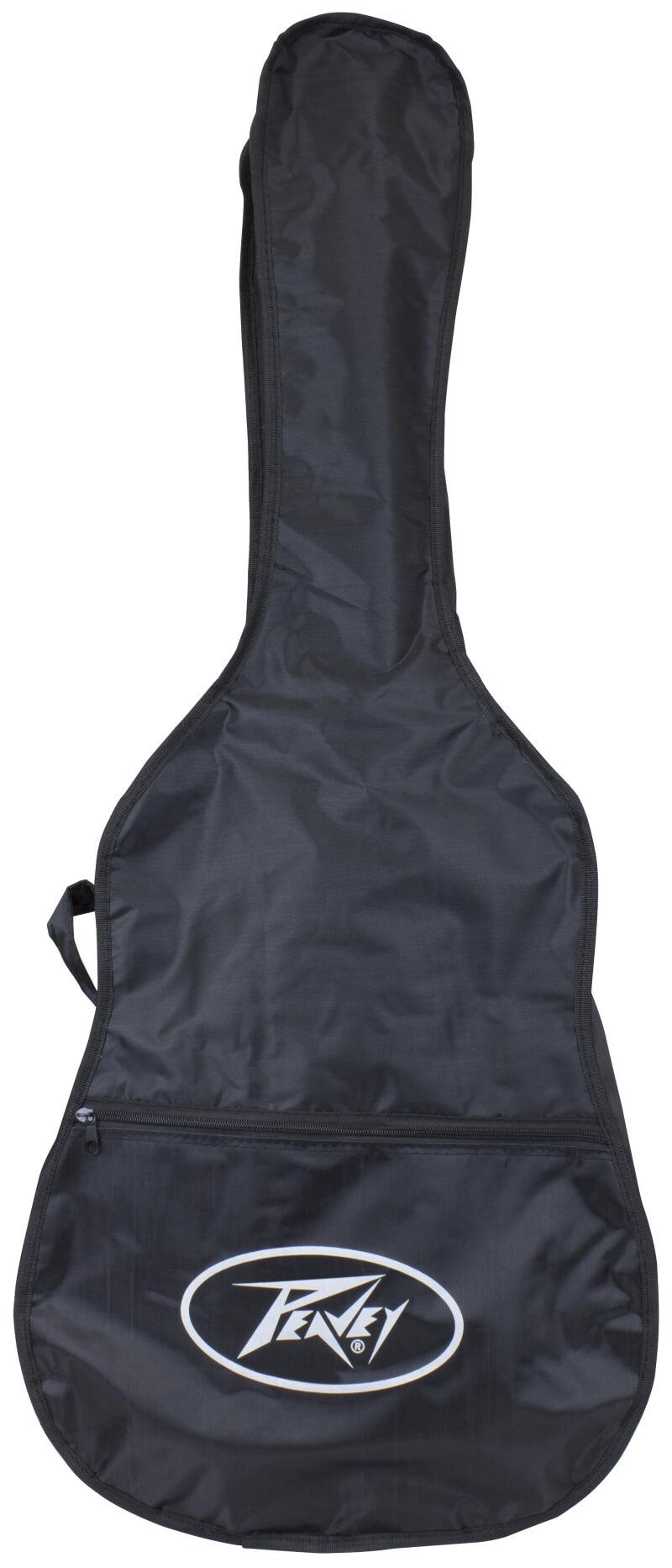 Peavey DW 2 Acoustic Guitar - bag, image credit: Peavey
