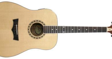 Peavey DW 2 Acoustic Guitar, image credit: Peavey