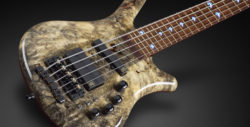 one of a kind – Masterbuilt Thumb NT #15-2874 5-string Buckeye Burl Top